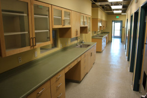 Exam room with counters and glass cupboards