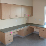 Exam room with counters and closed cupboards